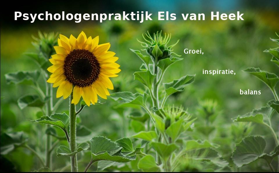 Psychologenpraktijk Els van Heek